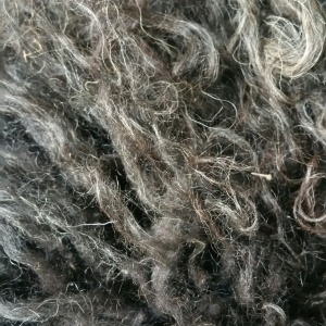 Fiber - raw fleeces